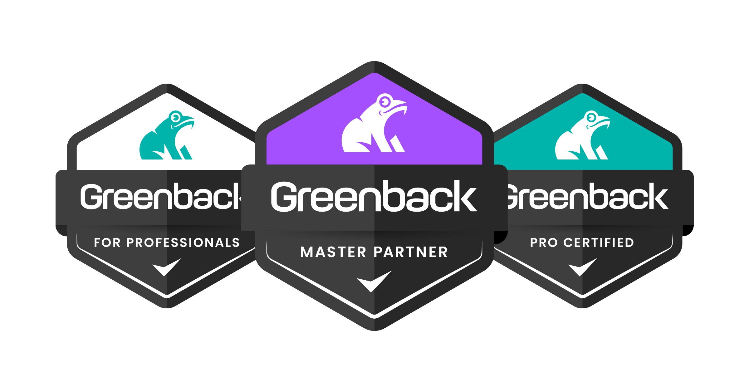 Introduction to Greenback for Pros